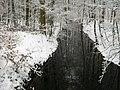Fliess-vom-Suckowsee-zum-Krinkowsee-16-02-2009-17.jpg