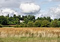 Floodplain of the River Stour - geograph.org.uk - 1438156.jpg