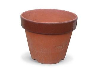 Flowerpot - A terracotta flowerpot