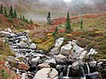 Fog and fall colors in Edith Basin. Mid September 2015. (79816e9b0c5948878a775454929df467).JPG