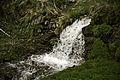 Font de la Peguera - Riu de la Peguera.jpg