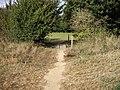 Footbridge leading to picnic area - geograph.org.uk - 1464347.jpg