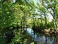 Footbridge to small island in Kalachevkyi Park, Rokytne 01.jpg