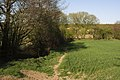 Footpath, Riverside Farm - geograph.org.uk - 2348194.jpg