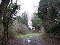 Footpath-bridleway junction - geograph.org.uk - 1080840.jpg
