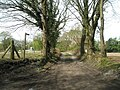 Footpath linking Minsted to the sandpit - geograph.org.uk - 778564.jpg