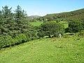 Footpath near Beudy Cerig - geograph.org.uk - 564291.jpg