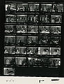 Ford B1122 NLGRF photo contact sheet (1976-08-19)(Gerald Ford Library).jpg