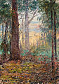 Frederick McCubbin - Forest Macedon, 1910.jpg