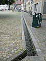 Freiburger Bächle 1000603.jpg