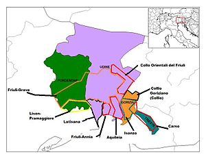 Friuli-Venezia Giulia wine - Approximate location of the wine regions of the Friuli-Venezia Giulia.
