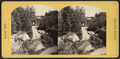 From rustic archway, from Robert N. Dennis collection of stereoscopic views.png