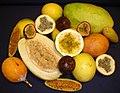 Frutos de las principales especies cultivadas de Passiflora.jpg