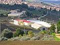 Fungaia Mendola - Villalba . - panoramio.jpg