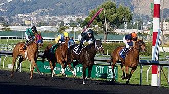 Horse racing - Horse racing at Golden Gate Fields, 2017