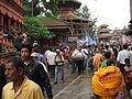 Gai Jatra Kathmandu Nepal (5116649194).jpg