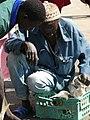 GambiaKoliliBeach037 (5425607123).jpg