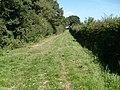 Garston's Lane - geograph.org.uk - 901590.jpg
