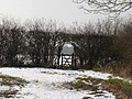 Gate in Hedge - geograph.org.uk - 1152530.jpg