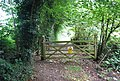 Gate on the Tunbridge Wells Circular Path north of Pennington Rd, Southborough - geograph.org.uk - 1484402.jpg