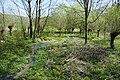 Gellinghausen - Gellinghausener Quelle.jpg