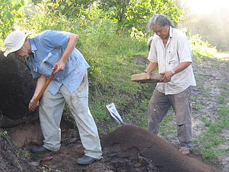 George Simon (artist) - Simon at work on the Berbice Archaeology Project, 2009.
