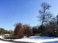 Georgia snow IMG 5459 (24104261467).jpg