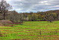 Gfp-wisconsin-ice-age-trail-meadow-and-forest-on-trail.jpg
