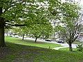 Glendale Avenue - geograph.org.uk - 1276176.jpg
