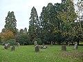 Gorsedd stone circle, Tredegar House Park - geograph.org.uk - 616774.jpg