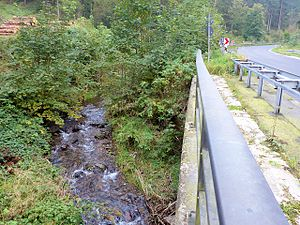 Gose (river) - Gose along the B 241 south-west of Goslar centre