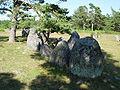 Gotland-Galrum 06.jpg