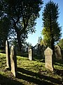 Gravestones in Birmingham.jpg