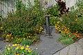 Green Spring Gardens in October (22603487170).jpg