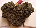 Greenockite - USGS Mineral Specimens 592.jpg