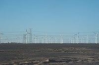 Guazhou.champs éoliennes.jpg