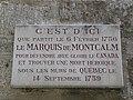 Hôtel de Montcalm (Montpeller) - Placa commemorativa.jpg