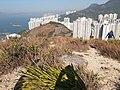 HK ALC 鴨脷洲 Ap Lei Chau 玉桂山 Yuk Kwai Shan hill top view 360 November 2019 SSG 01.jpg