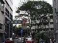 HK Wan Chai Road 灣仔道 view 德仁街 Tak Yan Street Sunday May-2012.JPG