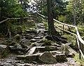 Harz AufstiegAchtermannshoehe 1.jpg