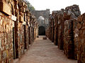 Hauz khas fort inside.jpg