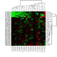 Gene expression profiling - Wikipedia