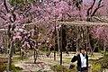 Heian Jingu Garden (3484410617).jpg