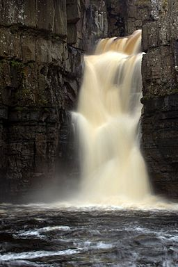 High force.jpg