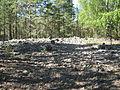 Hiittenharju boulder field 1.JPG