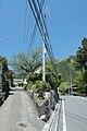 Hikawa, Okutama, Nishitama District, Tokyo 198-0212, Japan - panoramio (6).jpg