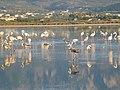 Holidays Greece - panoramio (400).jpg