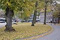 Hoofdstraat, Emmen (8119229668).jpg