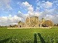 Hore Abbey, Caiseal, Éire - 45671300625.jpg