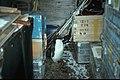 Horseshoe I penguin in pup shed.jpg